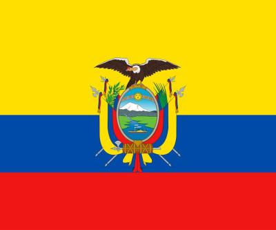 Quinta doação - Programa solidário atenção comunidade equatoriana em sp