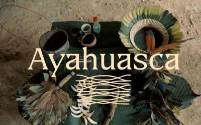 Ayahuasca - Plantas de Poder